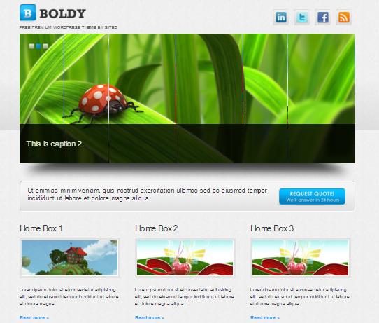 WordPress Boldy Türkçe Tema