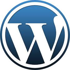 wordpress admin sifresi