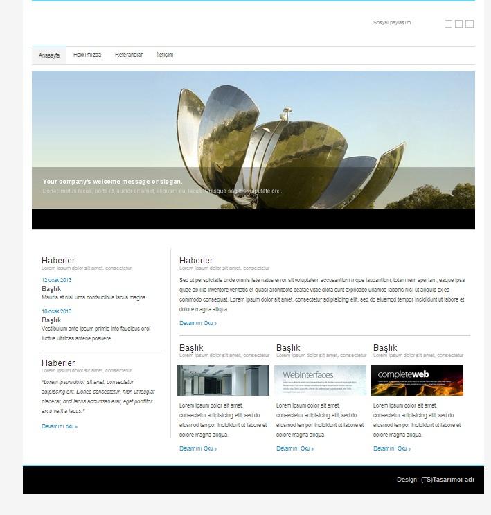 Kurumsal Site Örneği | Hazır Css-Html site – 2