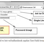 Text Field Örnekleri
