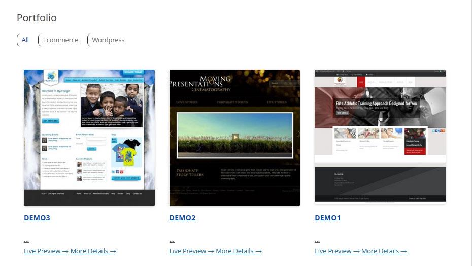 Expert-Village-Media-Portfolio