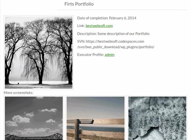 wordpress_Portfolio_galeri_eklentisi