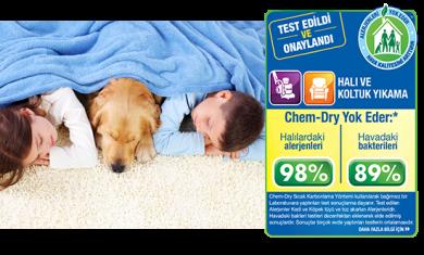 chem-dry-png