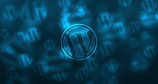 5 Dakikada WordPress sitesi Açma