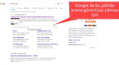 google-sonuçlarında-site içi arama